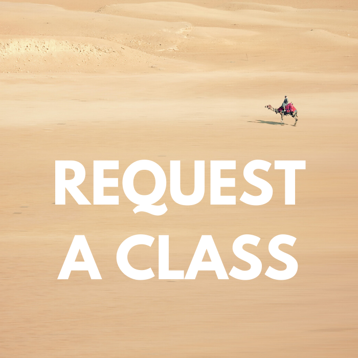 Request a 1:1 or Group Zoom Class for Kids